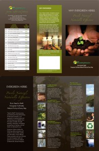 Educational Patient Brochures: Why Evergreen Herbs (50 brochures)